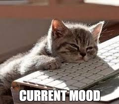 Current Mood Meme Tired | So tired meme, Tired funny, Exhausted humor