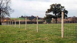 Twelve Top Tips For Perfect Fencing Farmers Weekly