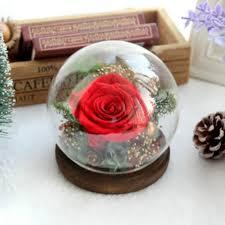 preserved rose in globe shape glass