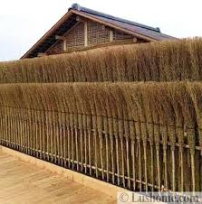 Beautiful Fences Design Ideas And Summer Yard Landscaping Inspirations