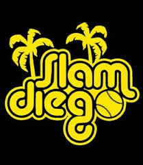 San Diego Padres Mlb Baseball Vinyl Die Cut Car Decal Sticker Slam Diego Ebay