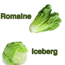 does lettuce have any nutrition or does