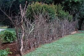 Twig Fences Francine Menor Rustic Fence Garden Art Projects Deer Fence