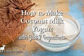 how to make coconut milk yogurt with