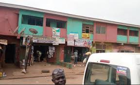 Serious Controversy As 81-Year-Old Woman Living With Dogs Goes Missing In  Enugu