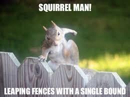 Squirrel Nut Quotes Quotesgram