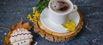 bulletproof coffee mealgarden