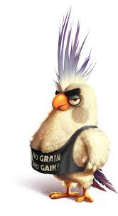 Download Angry Birds Wiki - Chicken, HD Png Download - uokpl.rs