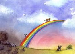 The Rainbow Bridge to heaven.