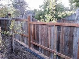 Montana Wildlife Gardener Garden Project Progress Home Resource Fencing