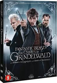 bol.com | Fantastic Beasts 2 - The Crimes of Grindelwald (Dvd), Jude Law