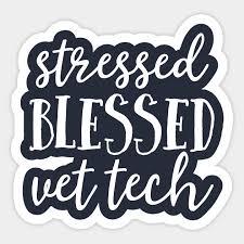 stressed blessed vet tech veterinarian