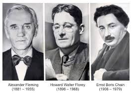 Image result for florey and chain