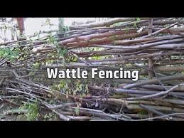 Grow Build A Free Fence Diy Woven Branch Design Wattle Fence Youtube