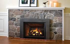 gas propane fireplace insert