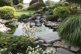 designing a feng shui koi fish pond