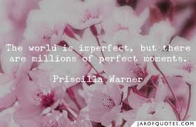 the world is imperfect but there are millions of perfect moments