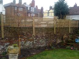 Fitting Trellis To The Top Of A Brick Wall Google Search Garden Trellis Fence Backyard Trellis Easy Backyard Landscaping
