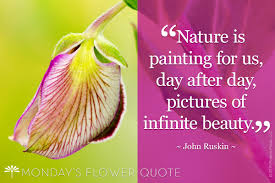 nature is painting for us floating petals flower quote