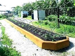 vegetable garden raised bed design
