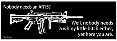 Amazon Com Js Artworks Nobody Needs An Ar15 Well Nobody Needs A Whiny Little B Either Yet Here You Are Vinyl Sticker Decal Automotive