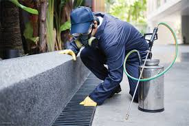 Services & Maintenance: Key Pest Control Concerns For Facilities