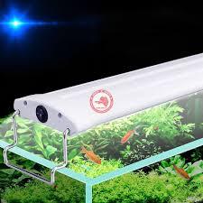 Đèn LED Cho Hồ Thủy Sinh - Đèn LED Gán Thành Hồ Cá Tép