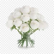 إناء الورود البيضاء في إناء ارتفع صورة بابوا نيو غينيا