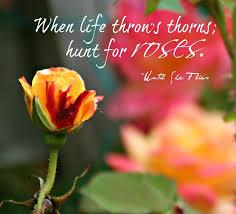 abcdeedabb jpg × rose quotes