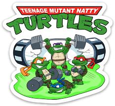 Tmnt Teenage Mutant Natty Turtles Vinyl Sticker Flex Comics