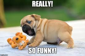 whenever someone tries to make me laugh