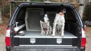 diy truck storage part 1 pointing dog