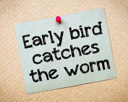 99 Early Bird Catches Worm Photos - Free & Royalty-Free Stock ...