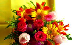 زهور جميلة من يعشق الزهور يعرف قيمتها قلوب فتيات