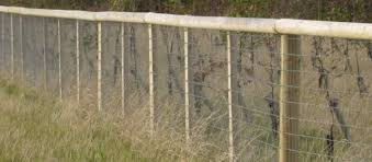 Non Climb Rigid Stay Horse Fence From Red Brand From Fenceline Supplies
