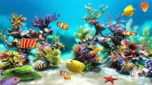 animated aquarium desktop wallpaper