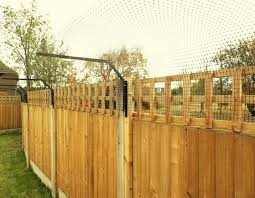 Agile Breed Cat Fencing Cat Fence And Catio Specialists Sanctuary Sos