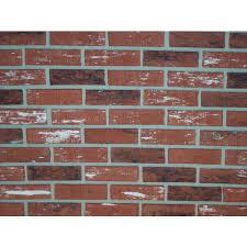 z brick inca used 2 3 in x 8 in