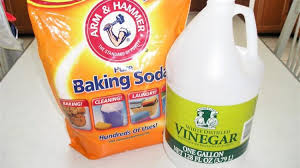 clogged sinks homemade drain cleaner