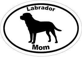 Amazon Com Wickedgoodz Oval Vinyl Labrador Retriever Dog Decal Lab Mom Bumper Sticker Retriever Gift Clothing