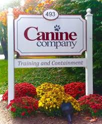 Canine Company Celebrates 30 Years Of Protecting Pets
