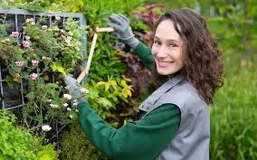hire a professional landscape gardener