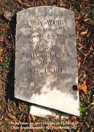 Polly Ward (1839-1915) - Find A Grave Memorial