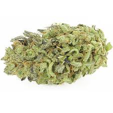Image result for durban poison