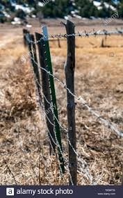 Close Up Of Barbed Wire Fence Wooden Fence Post Ranch In Central Colorado Usa Stock Photo Alamy