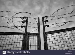 Barbed Wire Fence And Metal Gate Stock Photo Alamy