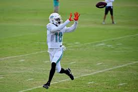 Report: Preston Williams Looks to Be in 'Midst of Breakout' in Miami  Dolphins Camp | Dolphin Nation
