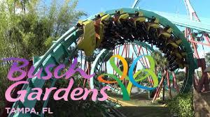 roller coasters of busch gardens ta