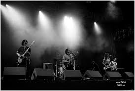 Knowsley Music Festival - The Zutons - Pete Carr