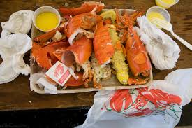 devoured lobsters at Rockland, Maine ...